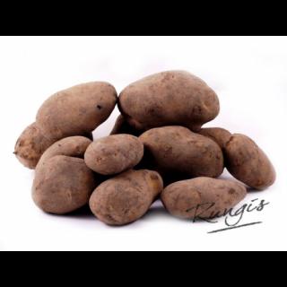Aardappelen Agria Bonken Vuil
